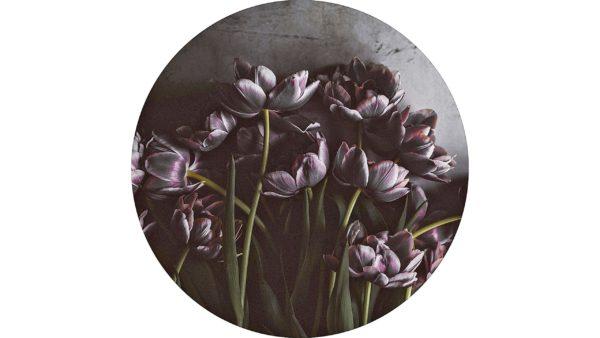 Digitalprint Dark Tulip auf Holz